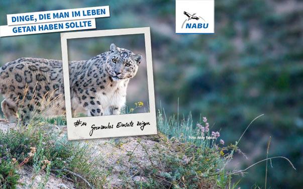 https://www.nabu-netz.de/fileadmin/Dateien/Bilder/NABU_allgemein/Startseitenbilder/Kampagnen_und_Aktionen/banner-imagekampagne-grenzenloser-einsatz.jpg