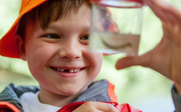 Junge mit Gelbrandkäferlarve - Foto: NABU/Felix Paulin