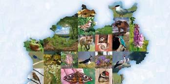 Festschrift: Für Mensch und Natur - 50 Jahre NABU NRW