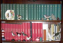 Private Bibliothek - Foto: Heinz Kowalski