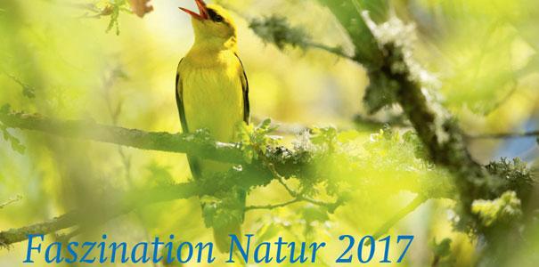 NABU-Kalender_2017_Cover.jpg